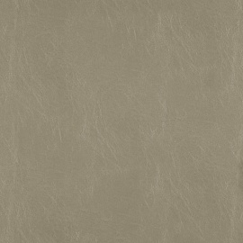 Marcher-Metallic 23-Putty